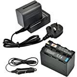 DSTE® 2x NP-F970 Rechargeable Li-ion Battery + DC01U Travel and Car Charger Adapter for Sony CCD-SC55 CCD-SC65 CCD-TR67 CCD-TR76 CCD-TR87 CCD-TR516 CCD-TR555 CCD-TR716 CCD-TR818 CCD-TR910 CCD-TR917 CCD-TR930 CCD-TR940 CCD-TR3000 CCD-TR3300 CCD-TRV15 CCD-TRV25 CCD-TRV36 TRV37 CCD-TRV41 CCD-TRV43 CCD-TRV46 CCD-TRV51 CCD-TRV57 CCD-TRV58 CCD-TRV62 CCD-TRV65 CCD-TRV66 CCD-TRV67 CCD-TRV68 CCD-TRV72 CCD-TRV75 CCD-TRV81 CCD-TRV82 CCD-TRV85 CCD-TRV87 CCD-TRV88 CCD-TRV90 CCD-TRV91 CCD-TRV93 CCD-TRV95 CCD-TRV98 CCD-TRV99 as NP-F330 NP-F530 NP-F550 NP-F730 NP-F750 NP-F750SP NP-F930 NP-F950 NP-F960