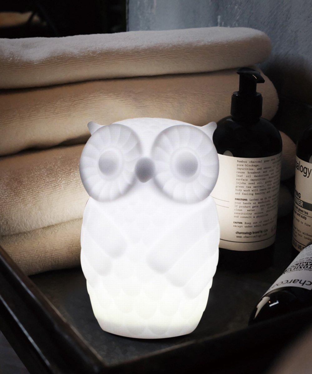 Lovingvs Owl Night Light, Cool White Battery Powered Porcelain Timer LED Table Lamp Desk lamp for Bedroom Decorative by Lovingvs (Image #6)