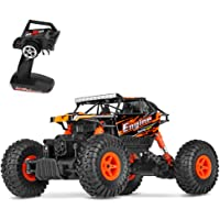 Theefun 1:18 Rock Crawler Remote Control Car