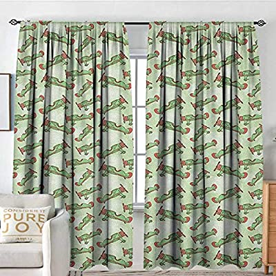 NUOMANAN Pattern Curtains Vintage Airplane,Hand Drawn Sixties Aircrafts on Abstract Bokeh Inspired Background, Fern Green Coral,Rod Pocket Curtain Panels for Bedroom & Kitchen