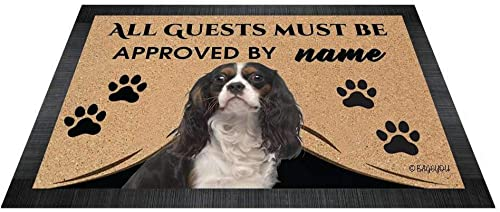 BAGEYOU All Guests Must be Approved Outdoor Doormat with My Love Dog Cavalier King Charles Spaniel Welcome Floor Mat Rug Custom Name 35.4 x 23.6