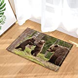 GoHeBe Animal Decor Brown Bears Family in Forest Bath Rugs Non-Slip Doormat Floor Entryways Indoor Front Door Mat Kids Bath Mat 15.7x23.6in Bathroom Accessories
