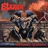 Unleash The Beast [VINYL]
