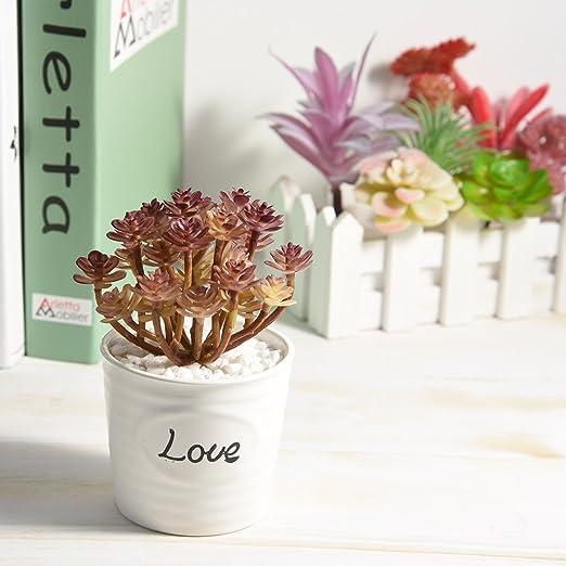 Cayway 20 PCS Artificielles Plantes Succulentes Cr/émeux et Rose Faux Fleur Succulentes Artificielles Petit Plantes Succulentes Artificielles D/écoration pour La Maison Jardin Int/érieur D/écoration