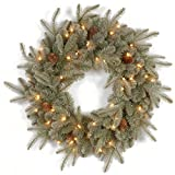 National Tree 24 Inch ''Feel Real'' Frosted Artic Spruce Wreath with Cones and 50 Clear Lights (PEFA1-307-24W-1)