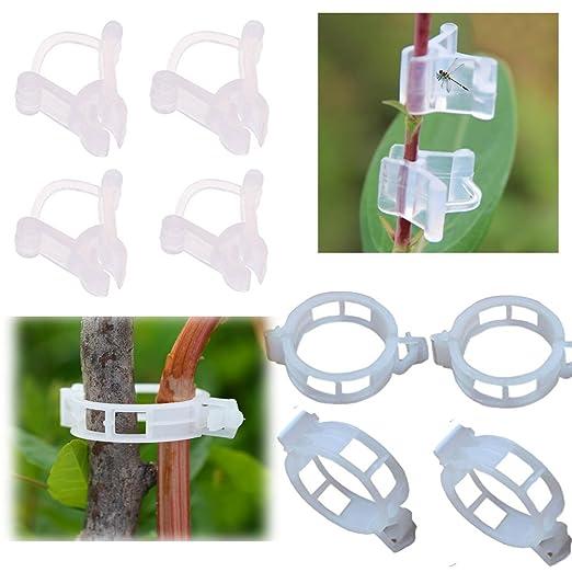 100 pcs soporte para plantas jardín clips, 50 tomates Vine Clips y ...