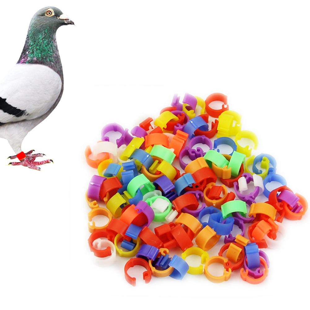HeroNeo® 100X 8mm Hen Pigeon Leg Poultry Dove Bird Chicks Parrot Clip Rings Band