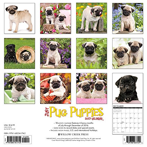 Just-Pug-Puppies-2017-Wall-Calendar-Dog-Breed-Calendars