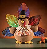 Fiber Optic Lighted Plush Turkey, Spot Clean