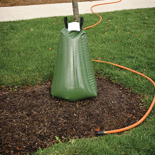 - AM Leonard Plant and Tree ArborRain Tower Hydrator - Green
