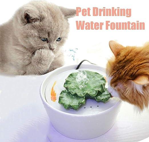 Fuente de Agua para Gatos y Perros, Cerámica Bebedero Gatos, Ultra silenciosa, Automático (Color : White): Amazon.es: Productos para mascotas