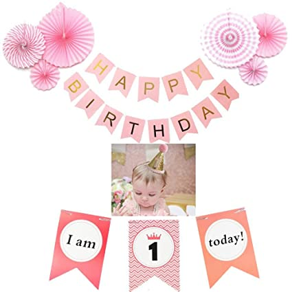 Baby Girls 1st Birthday Party Decorations Set