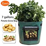 Gardzen 2 Pack Heavy Duty 7 Gallon Garden Vegetable Grow Bags With Access Flap And Handles, Suitable For Planting Potato, Taro, Beets, Carrots, Onions, Peanut
