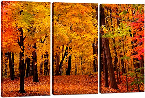 Canvas Wall Art Decor - 12x24 3 Piece Set (Total 24x36 inch) - Autumn Forest Tree - Decorative & Modern Multi Panel Split Canvas Prints for Dining & Living Room, - Art Wall Tree Autumn