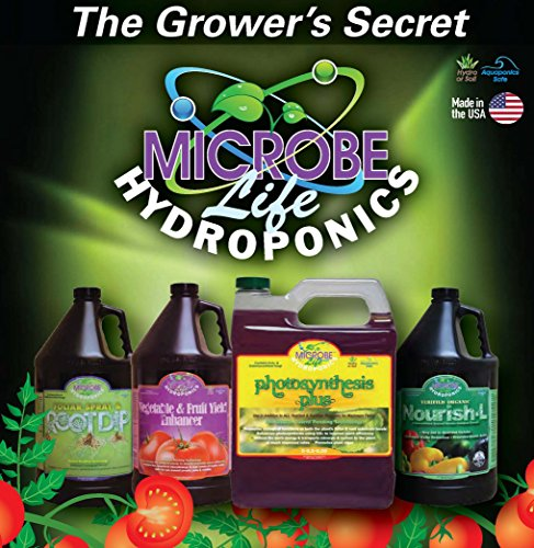 Microbe Life Hydroponics PH21368 Vitamins & Amino Acids Supplement for Hydroponics Soil Conditioning and Aquaponics (32 Ounce)