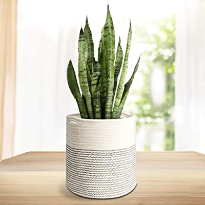 "Rope Plant Basket Modern Woven Basket Indoor Planter Up to 10 Inch Pot Woven Storage Organizer with Handles Home Decor, Black and White Stripes 11""x 11""(White): Garden & Outdoor"