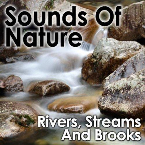 Stream Runs Under A Wooden Bridge