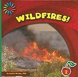 Wildfires! (21st Century Basic Skills Library)