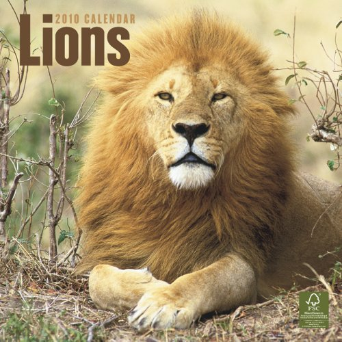 Lions 2010 Square Wall (Multilingual Edition)