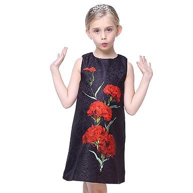 4008368a4b9 Yilaku Fille Enfant Robe Fleurs Broderie Fil Net sans Manches Robes De  Soirée 3-10
