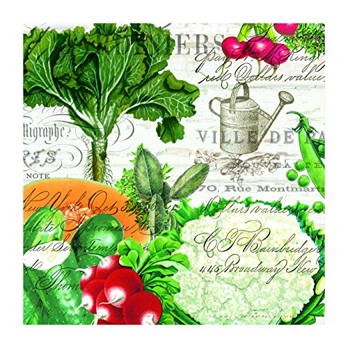 Michel Design Works From My Garden 20 Count Paper Luncheon Napkins ()