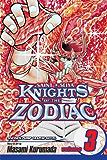 Knights of the Zodiac (Saint Seiya), Vol. 3: Phoenix! The Warrior From Hell
