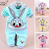 Sufang 2 Piece Set Hoodie+Pants Baby Cartoon Cute Velvet Bunny Set Newborn Long Sleeved