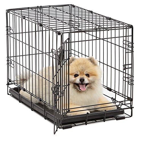 (Dog Crate | MidWest iCrate XS Folding Metal Dog Crate w/ Divider Panel, Floor Protecting Feet & Leak-Proof Dog Tray | 22L x 13W x 16H inches, XS Dog Breed, Black)