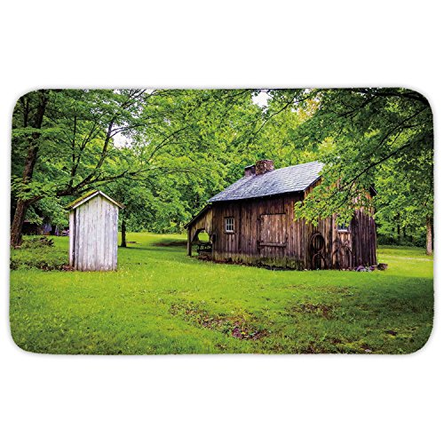 Rectangular Area Rug Mat Rug,Outhouse,Spring Time Forest Leaves with Outhouse Little Cottage Art Photo,Fern Green and Dark Brown,Home Decor Mat with Non Slip Backing (Ferns Rug Brown)