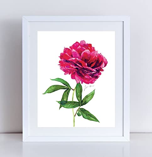 Amazon peony art peony painting peony watercolor pink peony peony art peony painting peony watercolor pink peony floral art flower painting cute art print pretty mightylinksfo