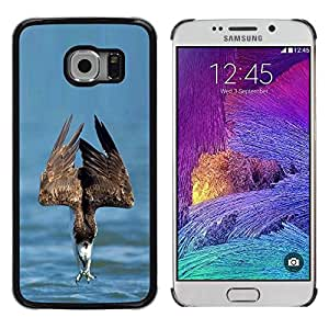 Caucho caso de Shell duro de la cubierta de accesorios de protección BY RAYDREAMMM - Samsung Galaxy S6 EDGE SM-G925 - Sea Summer Bird Prey