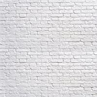 Kate 8x8ft(250x250cm) White Brick Wall Backdrops Photography Brick Floor Photo Studio Backgrounds for Party