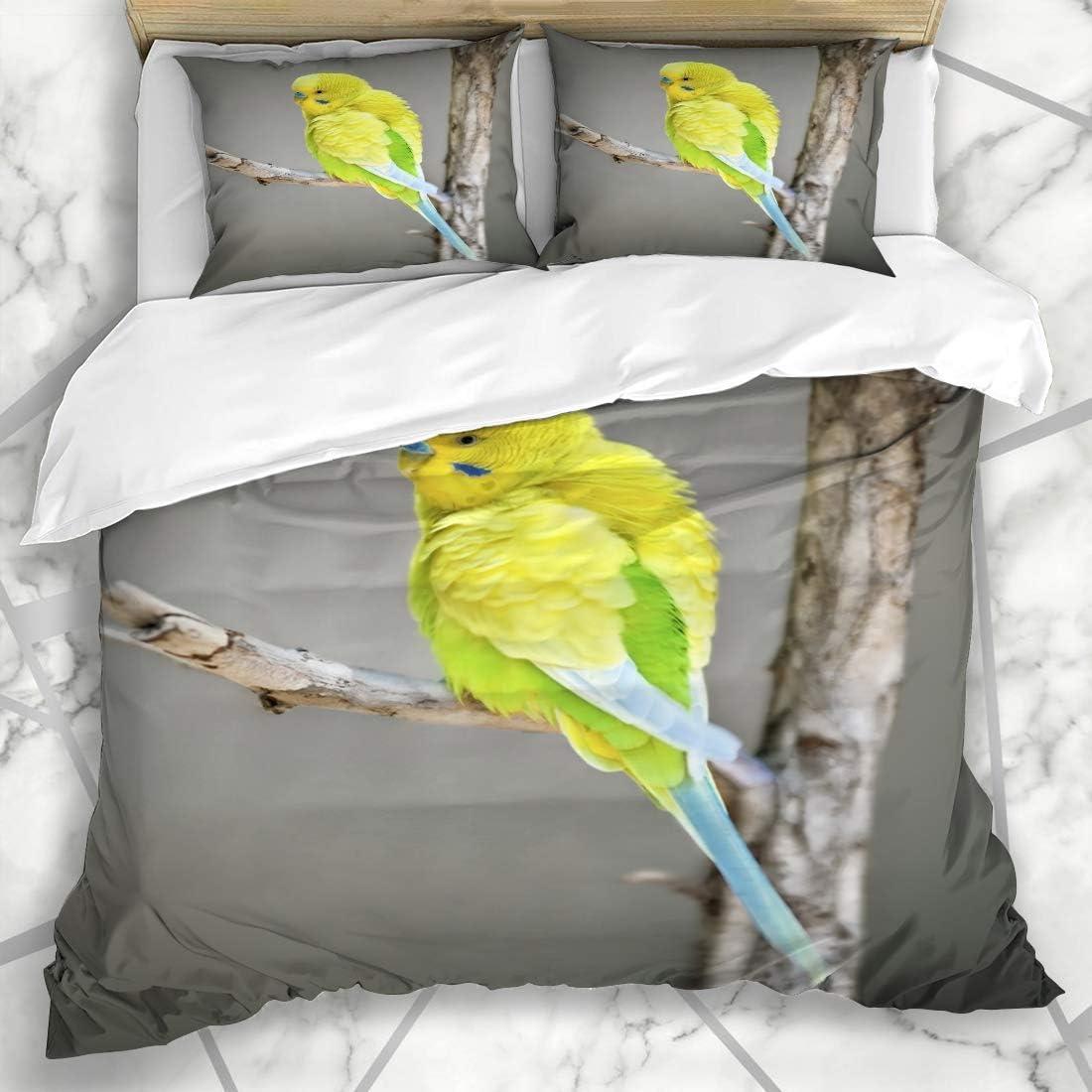 Conjuntos de fundas nórdicas Pico Periquito amarillo australiano en rama Periquito doméstico Naturaleza Diseño aviar Juguetón Ropa de cama de microfibra Super King Size con 2 Fundas de almohada Cuidad