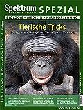 Tierische Tricks: Intelligenz und komplexes Verhalten im Tierreich (Spektrum Spezial - Biologie, Medizin, Hirnforschung)