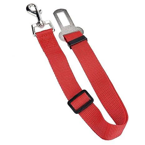 CAOQAO - Correa de Seguridad para el Coche para Perro, cinturón de ...