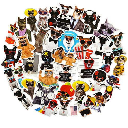 38PCS Cute Cat and Dog in Sunglasses Animals Stickers Waterproof Laptop Water Bottle Skateboard Decorative Stickers for Girls and Boy (Sunglasses ()
