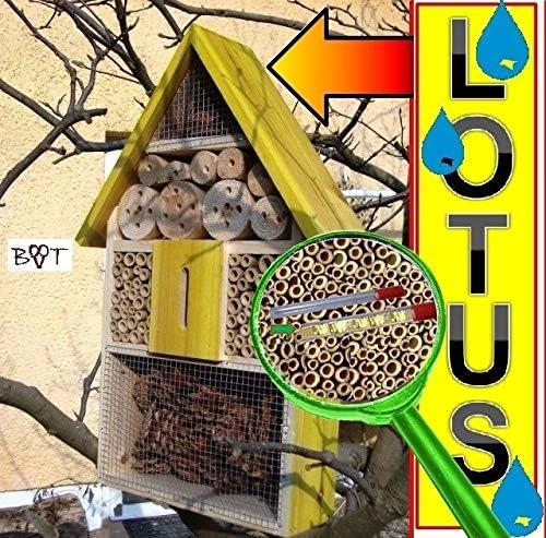 2 x Sichtglas Marienk/äferhaus Schmetterlingshaus,s gelb hellgelb Sonne Vogelh/äuser Nistkasten Insektenhotel LOTUS gro/ß 50 cm mit Lotus-Effekt Oberfl/ächen Beschichtung und 2 Sichtgl/äsern 8 und Gro/ßes Insektenhotel LOTUS