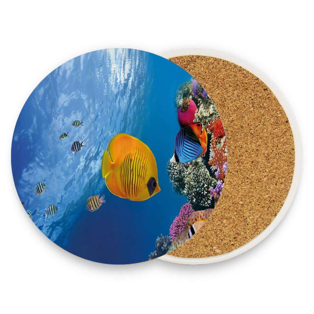 ドリンク用コースター セラミックラウンドコルク鍋敷き 耐熱性 ホットパッド テーブルカップマット コースター 1パック  Vibrant Colorful Underwater Life Image with Variety of Fishes on Coral in Red Sea B07RSYNZSC