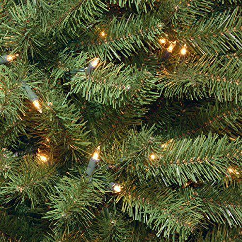 National Tree 7.5 Foot North Valley Spruce Tree with 550 Clear Lights, Hinged (NRV7-300-75) by National Tree Company (Image #3)