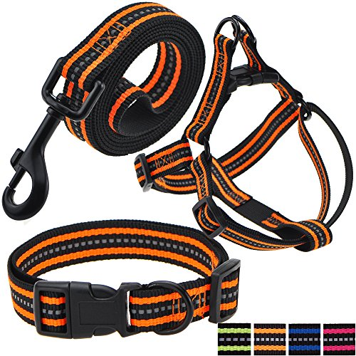Night Reflective Double Band Nylon Dog Pet Collar, Leash, Harness Set (Large, Black/Orange Band)