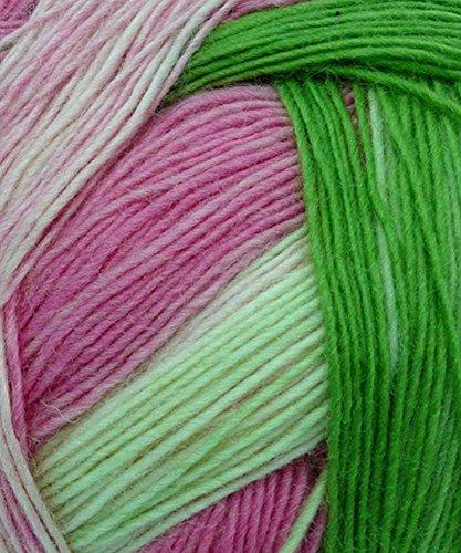 Alpaca Sock Yarn (Schoppel Zauberball City of Roses - 2079)