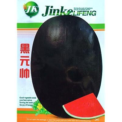 Super Black Skin Seedless Red Watermelon Organic Seeds, 1 Original Pack, 50 Seeds / Pack, Very Sweet 14% Sugar Juicy Fruit E3020 : Garden & Outdoor