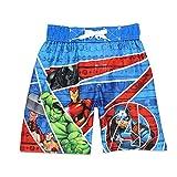 Avengers Superhero Boys Swim Trunks Swimwear (6, Red/Blue)