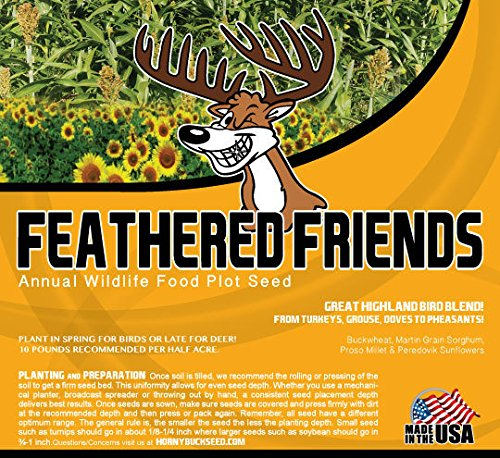 Feathered Friends -Horny Buck Wildlife Food Plot Seed (Deer, Turkeys, Grouse, Pheasant, Doves) (Wildlife Feed)