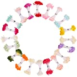 DECORA 20 Bundles 1700 Pieces Assorted Color 3mm Pearl Flower Stamen for Card Making Decoratiaon