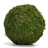 """Byher Natural Green Moss Decorative Ball,Handmade (3.5""""-set of 6)"""