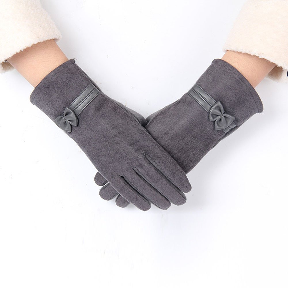 Lanhui 1Pair Screen Riding Drove Gloves for Women Winter Warm Gloves (22.5cm/8.9'' x18cm/7.1'', Gray)