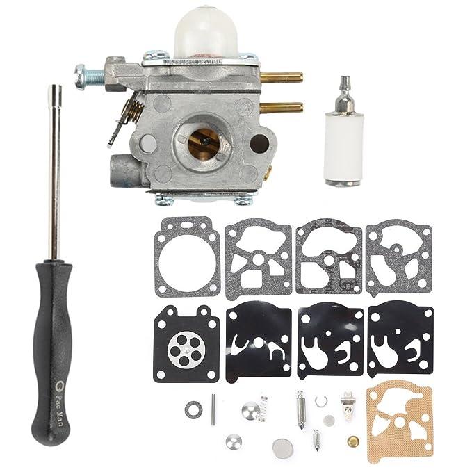 753 - 06190 carburador con ajuste herramienta para Walbro wt-973 ...