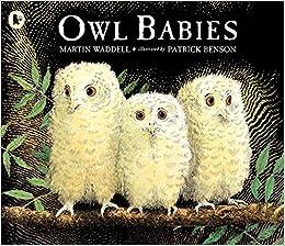 Image result for owl babies