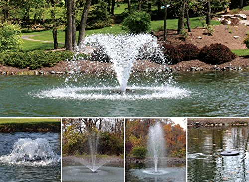Otterbine 1/2HP Fractional Series: 5-in-1 Pond Aerator/Fountain (115V) with 50ft Cable [HW] by Otterbine